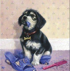 pbn bad puppy a4